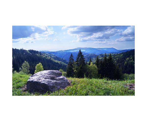 Bild Schwarzwaldhöhen Farbe LP28