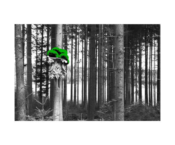 Bild Kuckucksuhr am Baum Bollen grün LP11B-G
